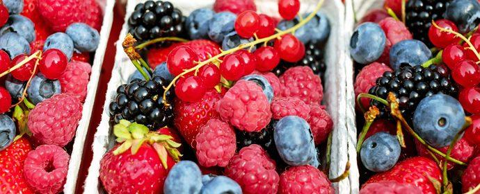 antioxidantes-olmata